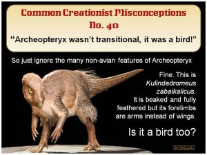 Archeopteryx wasn't a bird
